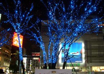 Shinjuku1221