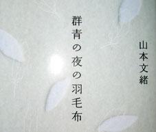 Novel060706